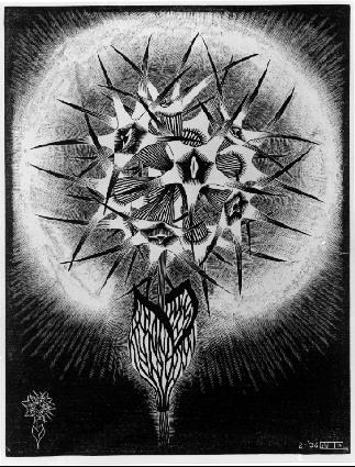 Prickly Flower, 1936 #mcescher #expressionism