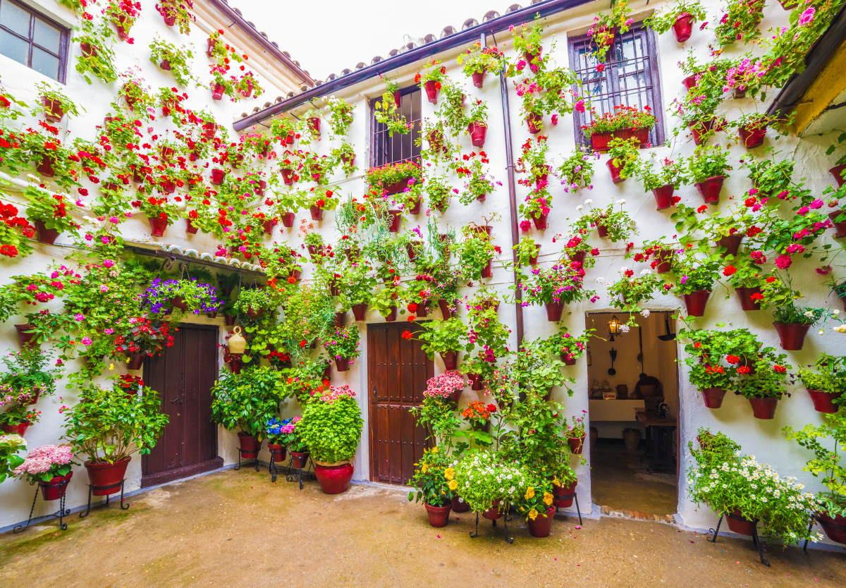 #ViveAndalucia | La ciudad califal, entre los destinos españoles recomendados en 2021 por el New York Times vía @hosteltur  #Cordoba