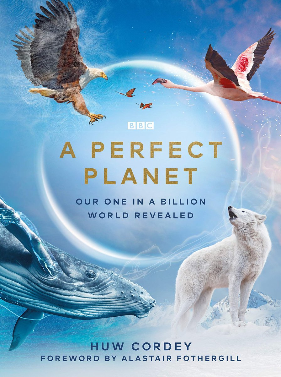 Another must watch by the brilliant #SirDavidAttenborough. His latest work takes a sobering look at the state of our planet and our prospects for the future. #APerfectPlanet explores how weather, ocean currents, the sun and volcanoes have shaped the world we live in. #sobering