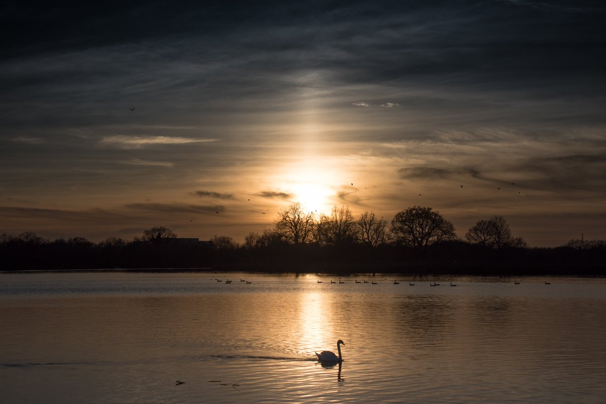Relaaaaaaaaaaax...  #OneDrive telling me that I took this #OTD 2019. So not breaking any lockdown rules.   #landscapephotography #lakeside #countryfile #countryside #wildlife #wildlifephotography #Nikon #sunset #naturelover #nature https://t.co/z5G78Vnmya