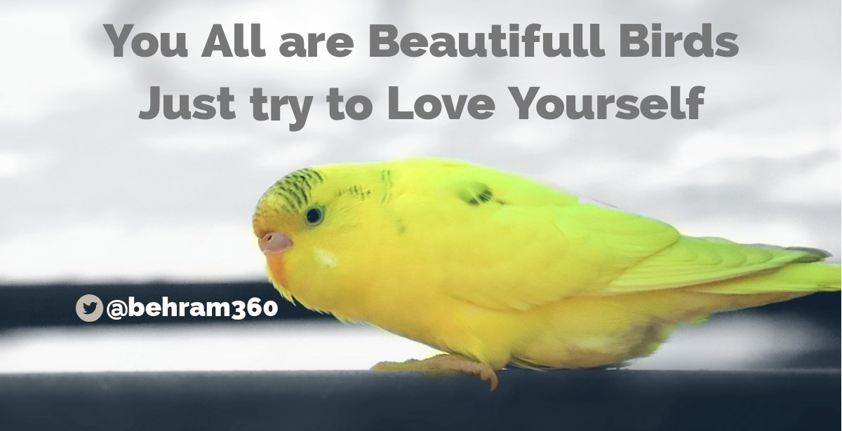 You have to love who you are and there is nothing wrong in it❤❤ #MotivationalQuotes #quotes #sundayvibes #share #behramquotes #inspiration #StrongerTogether2021 #Motivation #quoteoftheday #thoughts https://t.co/duYTjswceM