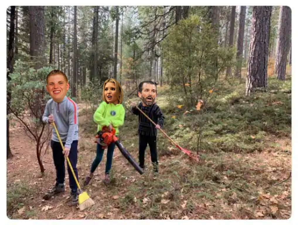 🎢 Since POTUS is leaving the #WhiteHouse in disgrace, Ivanka will either be going to prison or looking for a new line of work - I suggest forest raking #NewJobs4Ivanka #TrumpSeriesFinale