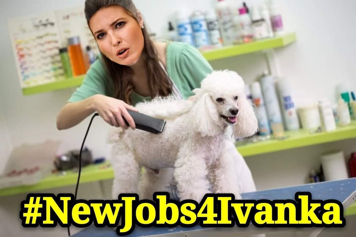 🐕 Since POTUS is leaving the #WhiteHouse in disgrace, Ivanka will either be going to prison or looking for a new line of work #NewJobs4Ivanka #TrumpSeriesFinale #Indoguration