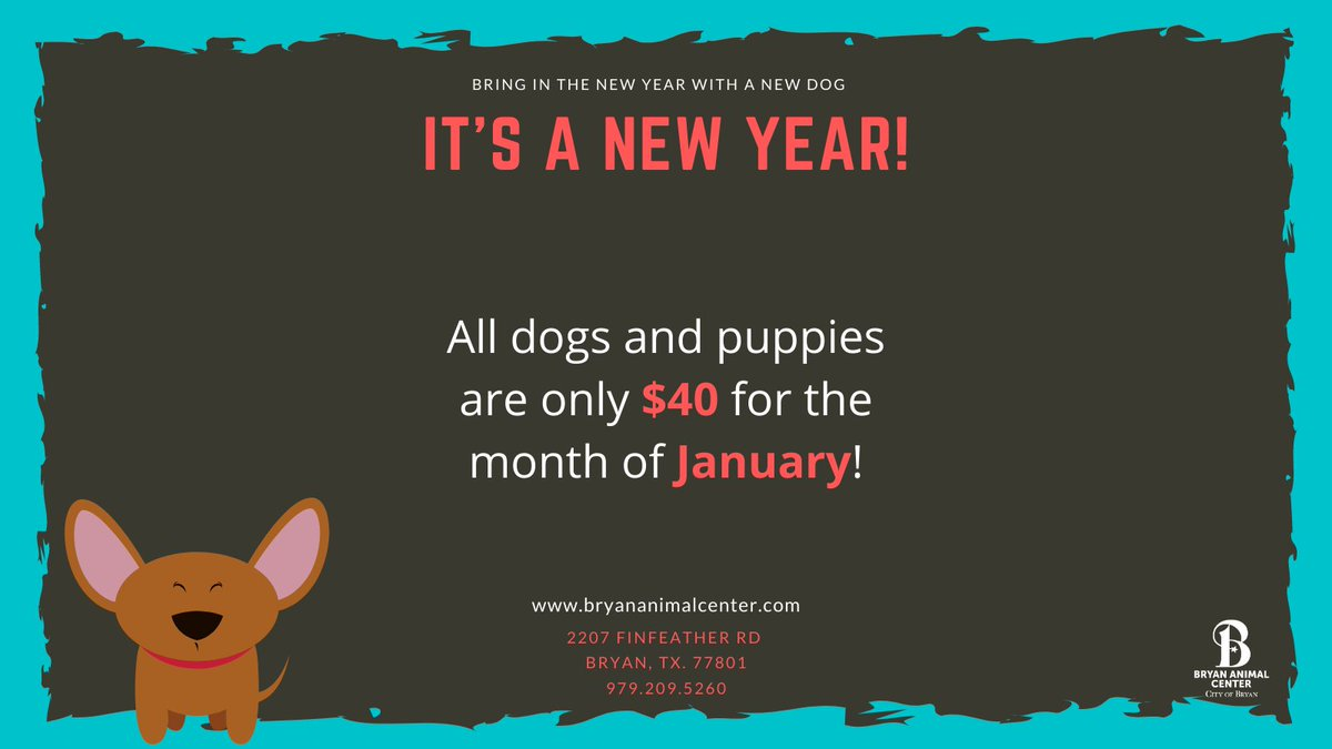 Let's start the new year right! All dogs and puppies are ONLY $40 for the whole month of January! Check out all our our adoptable animals at . #NewYear #Adopt #Dogs #Puppies #Januaryspecial #betterinbryan #bryananimalcenter #Adoptadog #halfpriceadoptions