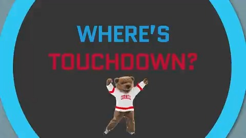 WIH: Touchdown was last spotted watching @CornellWHockey at Lynah Rink! Help us find Touchdown! #YellCornell https://t.co/ipfwRd7Rh2