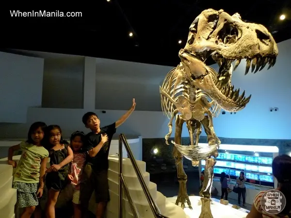 Why haven't we discovered any dinosaur fossils in the Philippines?  A thread! Read to know our OFFICIAL National Dinosaur. Well, technically.