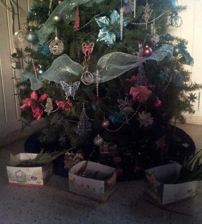 El Día de los Reyes Magos es una tradición que llena de mucha ilusión a Joesh, paciente de #StJude. Él y su familia celebran una gran fiesta con aguinaldos. También, acostumbran a cortar yerba del patio el día antes, y colocarla debajo del árbol navideño para los camellos.
