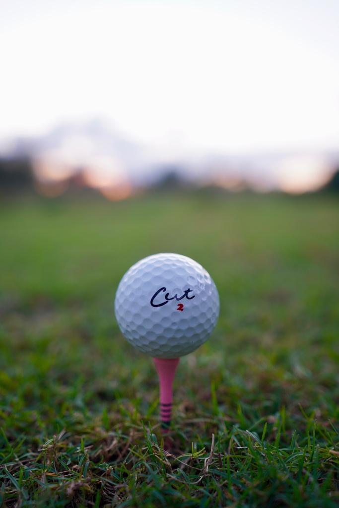 Cut Golf (@CUTgolfco) on Twitter photo 2021-01-06 23:01:26