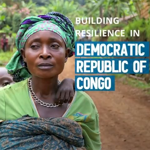Together, @WFPDRC and @FAODRCongo are building resilience in Congo #DRC thanks to funding from Germany🇩🇪.   👨🌾 Supporting 300,000 smallholder farmers 🛠️Wrench providing technical & legal assistance to farmer cooperatives 📒 training 5,000 women in literacy & business skills