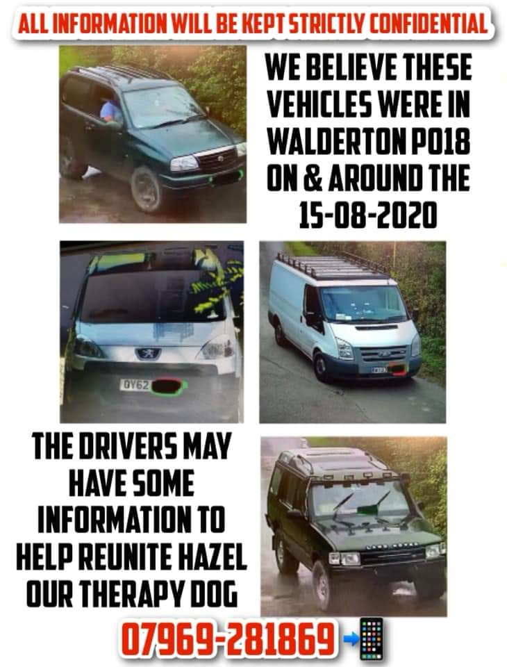 """Can we ask everyone to share this poster.  We need information please come forward if you know anything.  There is a finders fee for anyone who can reunite Hazel. I will repeat : ALL INFORMATION WILL BE KEPT STRICTLY CONFIDENTIAL."""
