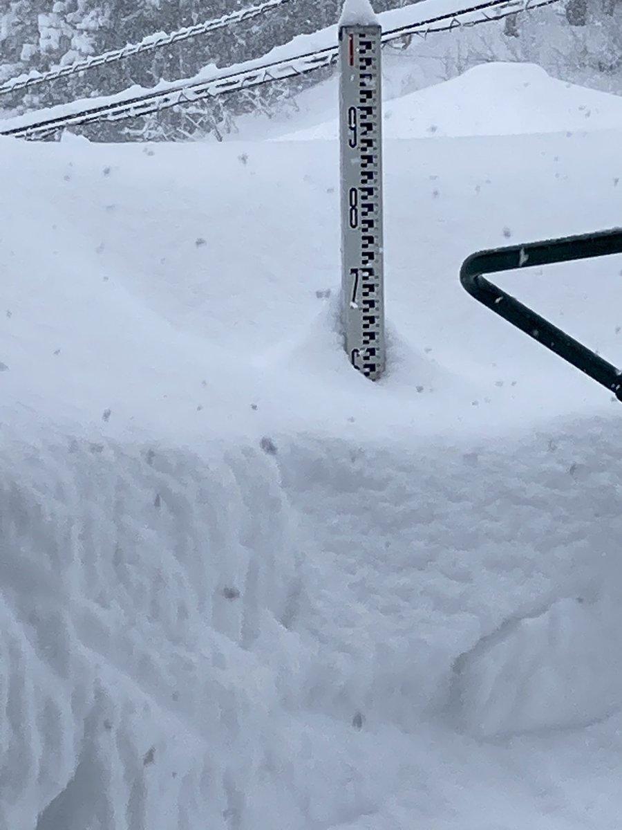 情報 雪 新潟 県 新潟の天気 NEXCO東日本