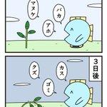 DV男のように?たまに優しい言葉を投げかけて植物を成長させる方法!