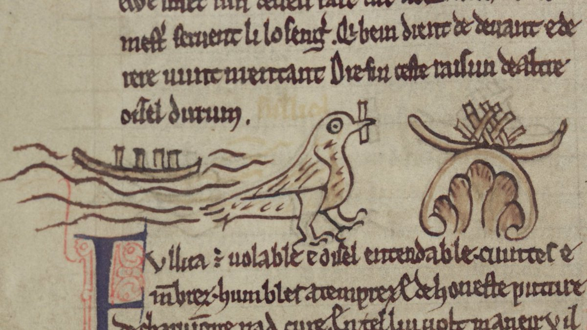 A manuscript illumination of a coot making its nest on water and on a rock