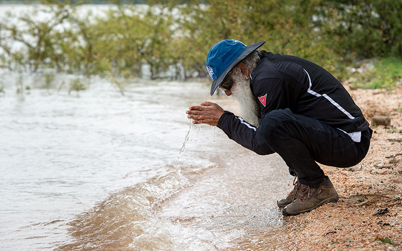 If we do not take care of a few fundamentals of environmental sustainability, the price we pay will be very unfortunate. #SadhguruQuotes