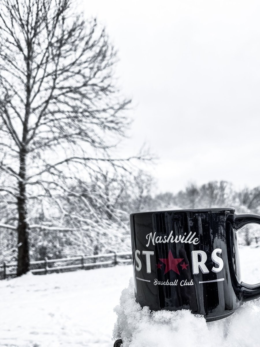 Replying to @NashvilleStars: Is anyone else in #Tennessee having a snow day today?