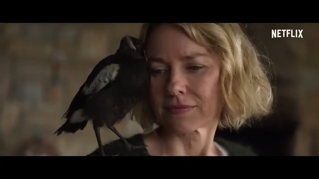 PENGUIN BLOOM is a truly inspiring story. Naomi Watts + Andrew Lincoln = me crying the entire time!