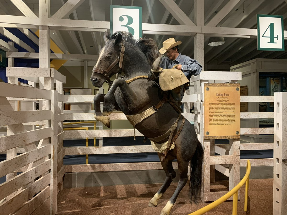 A big rule for new team members is no horseplay. This one might be tough for him. He looks like he might try to buck the system. Lol! #HashtagTheCowboy Thanks, Tim https://t.co/j60WKd8MTr