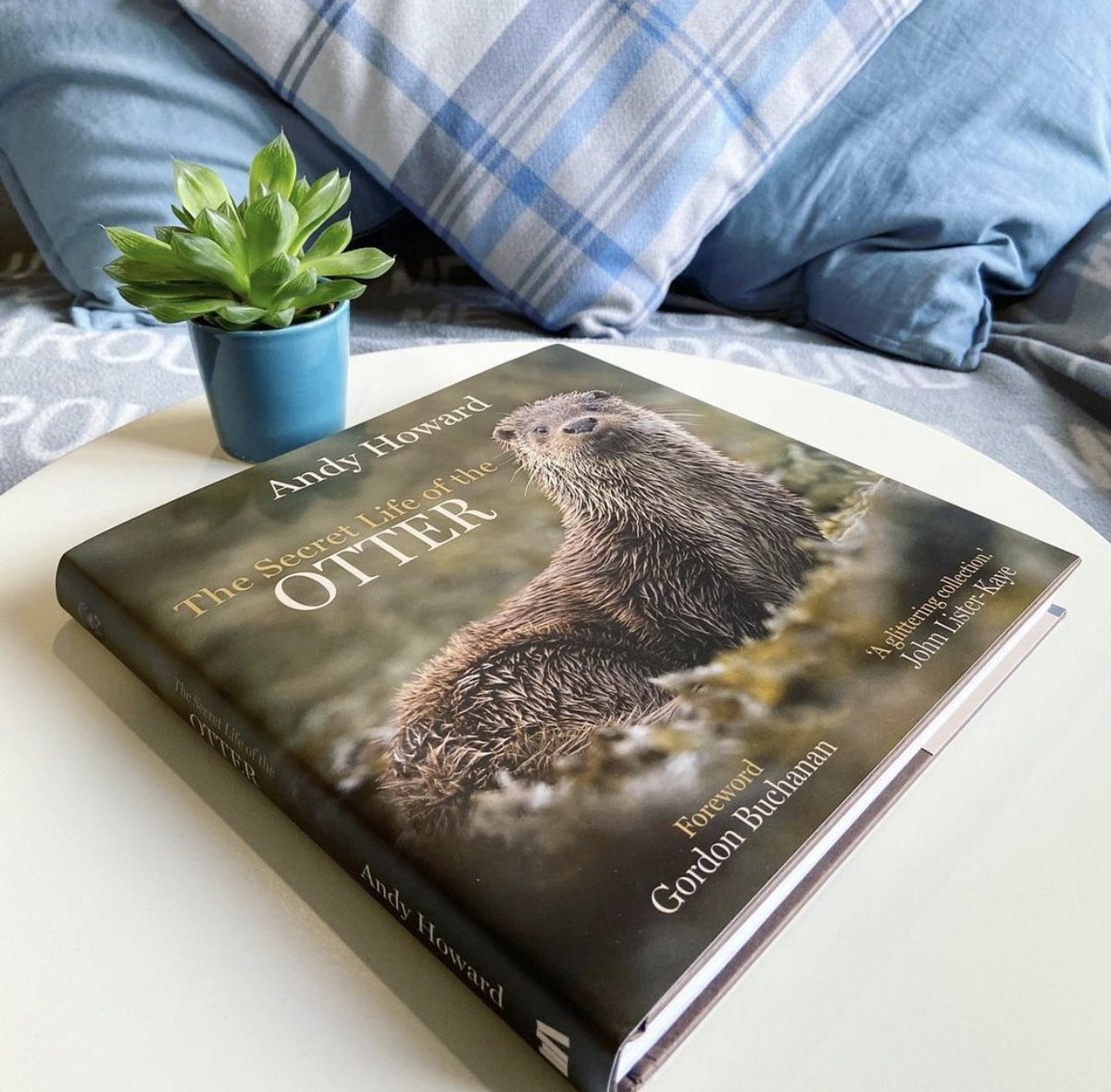I'm delighted to announce the arrival of my third book! 'The Secret Life Of The Otter' will be published early this Spring. Signed copies will be available on pre-order from my website soon, I'll keep you posted when.  It will also be available from all good book retailers.