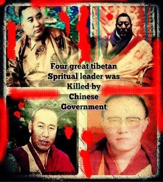TibetanInExile photo
