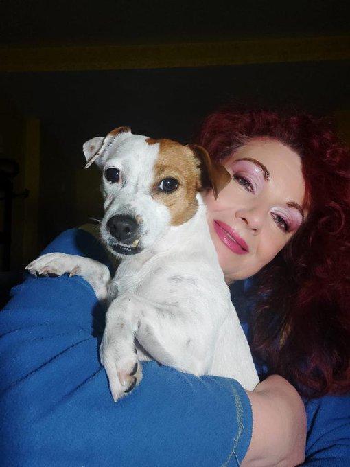 Questa cagnolina è shila.ciao da Jessica Rizzo https://t.co/CPIQGlDEZz