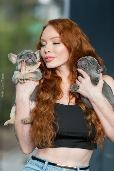 2 pic. Gotta get puppy cuddles in before they're 20lbs 😆 chunky frenchie babies . #gingers #redhead #ginger