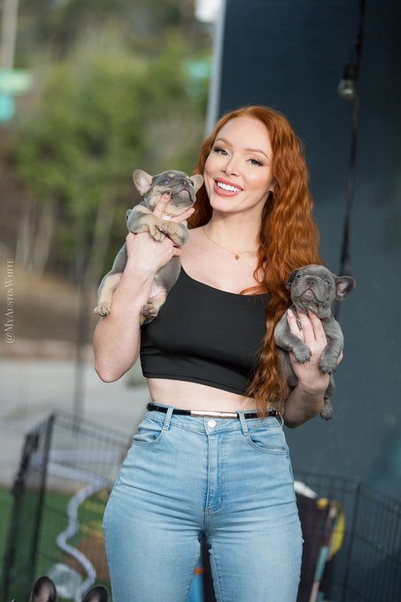 1 pic. Gotta get puppy cuddles in before they're 20lbs 😆 chunky frenchie babies . #gingers #redhead #ginger