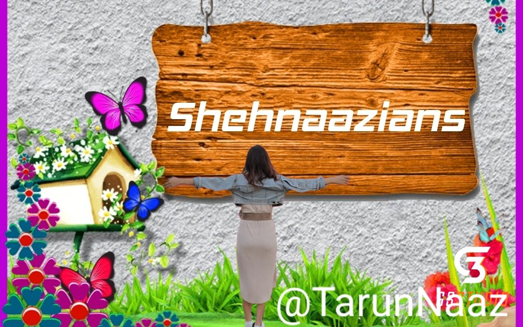 My Latest  Header  @ishehnaaz_gill  Love You Forever  Shehnaazians Always Support You No Matter What  ETERNAL LOVE FOR SHEHNAAZ #ShehnaazCDP