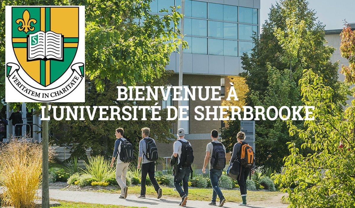 Claire-Deschênes Postdoctoral Fellowship at  Université de Sherbrooke (Québec, Canada)