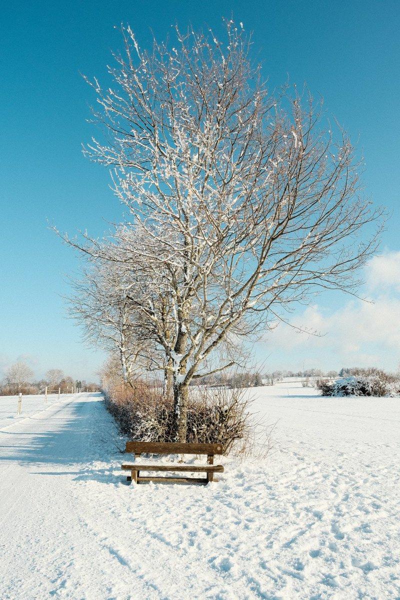 Ambiance hivernale #Pleigne #Jura #Suisse https://t.co/GqBPJDUWxv