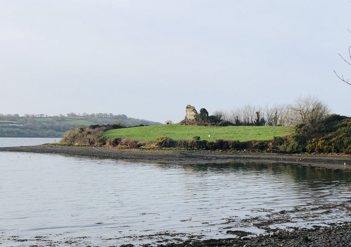 Castle ruins on a hill at Ahanesk in Cork harbour. Anyone know the history? @pure_cork @corkbeo  @PhotosCork #photography #Ireland  #100daysofwalking #cork  #Ireland #Christmas#Cork #5kmfromhome #NativeAmerican #usa #architecture #MondayMotivation @irishacw
