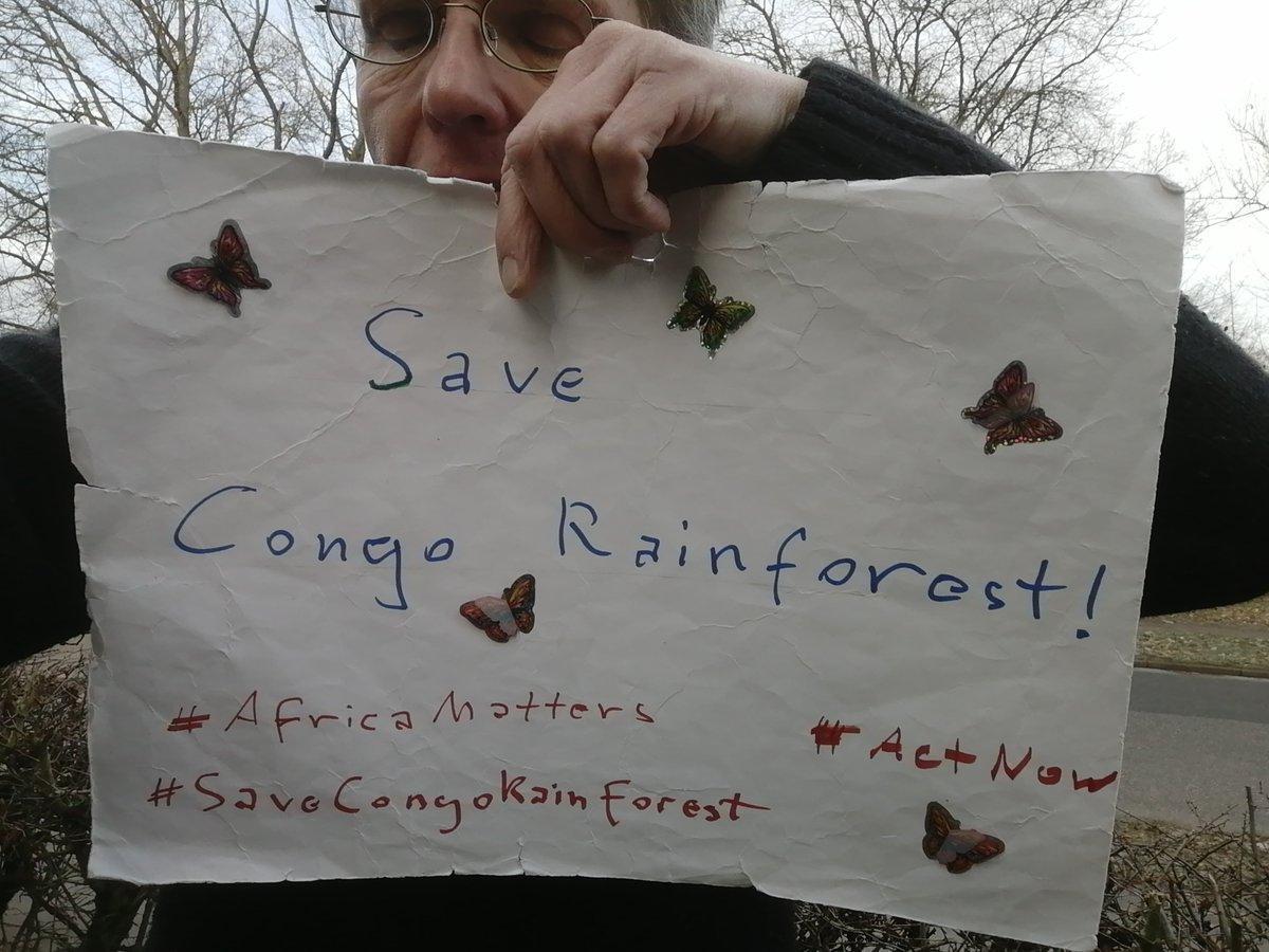 Day 313 #ClimateStrikeOnline #DigitalStrike #SaveCongoRainforest #SaveCongoForest_Flora_Fauna #AfricaMatters @SaveCongoForest @fff_digital  In Solidarity with @vanessa_vash and @Remy_Zahiga   @ElmGrace @OwlBlk @e_thunter  @_carbontiptoes @MorninGloryyy