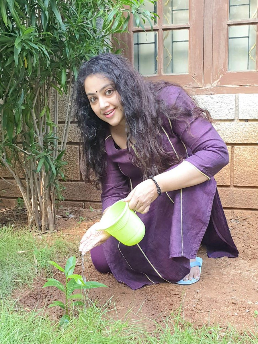 Indian actress #meena accepted #HaraHaiTohBharaHai #GreenindiaChallenge from @Devi_Nagavalli Planted 3 saplings.🌱  Further, She nominated @VenkyMama @KicchaSudeep @KeerthyOfficial @ManjuWarrier4 to plant 3 trees & continue the chain.  special thanks to @MPsantoshtrs Garu.