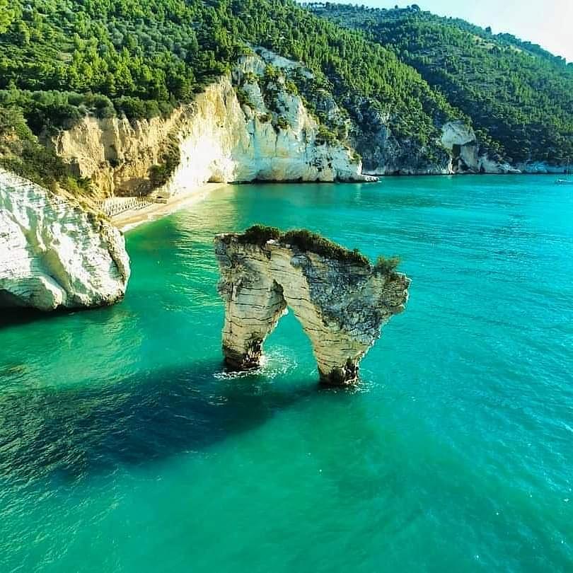 🇮🇹 Gargano, Foggia, Puglia 📷 @matteo_nuzziello  #gargano #foggia #puglia #apulia #sea #mare #spiaggia #beach #sunrise #alba #beautiful #goodmorning #buongiorno #nature #travel #travelplace #travelphoto #italy #italytrip #italytravel #italyiloveyou #italia #italytour #italystyle