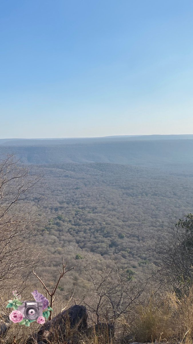 Vindhyachal Ranges from 'High Point' in #Ranthambore national park!