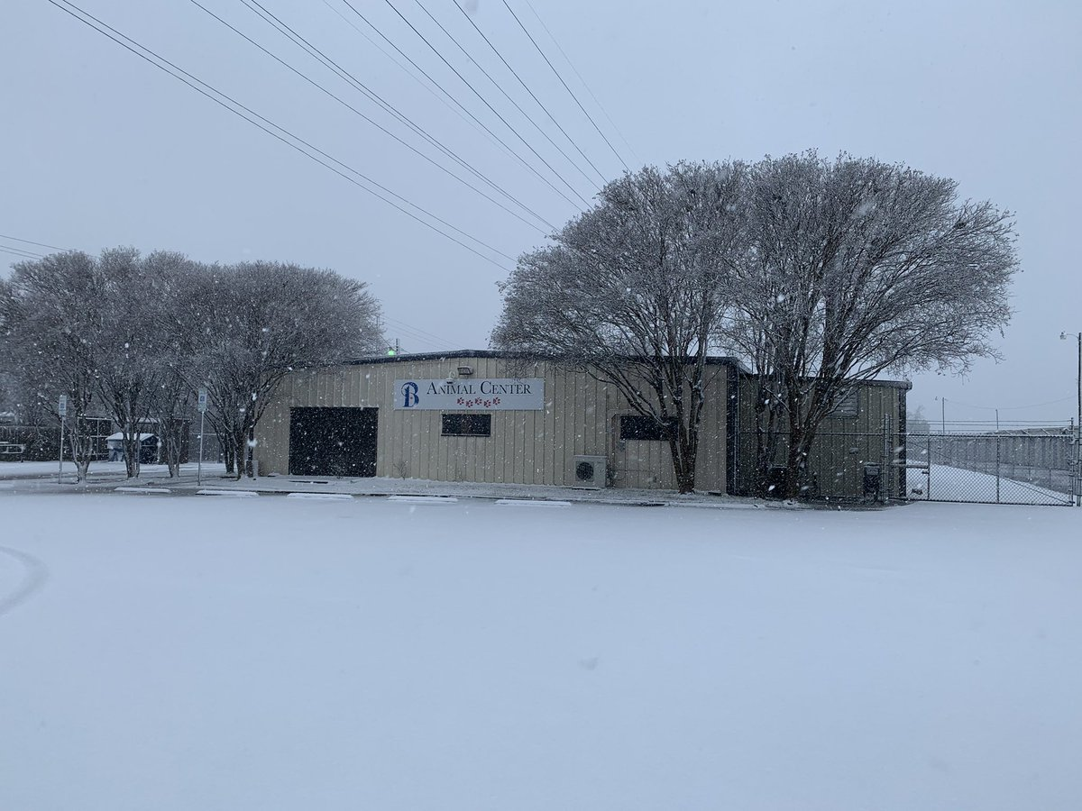 While enjoying this Winter Wonderland, please remember to keep your pets safe and out of inclement weather. ❄️ ⛄️  #petsafety #CityofBryan #warm #winter #BryanAnimalCenter