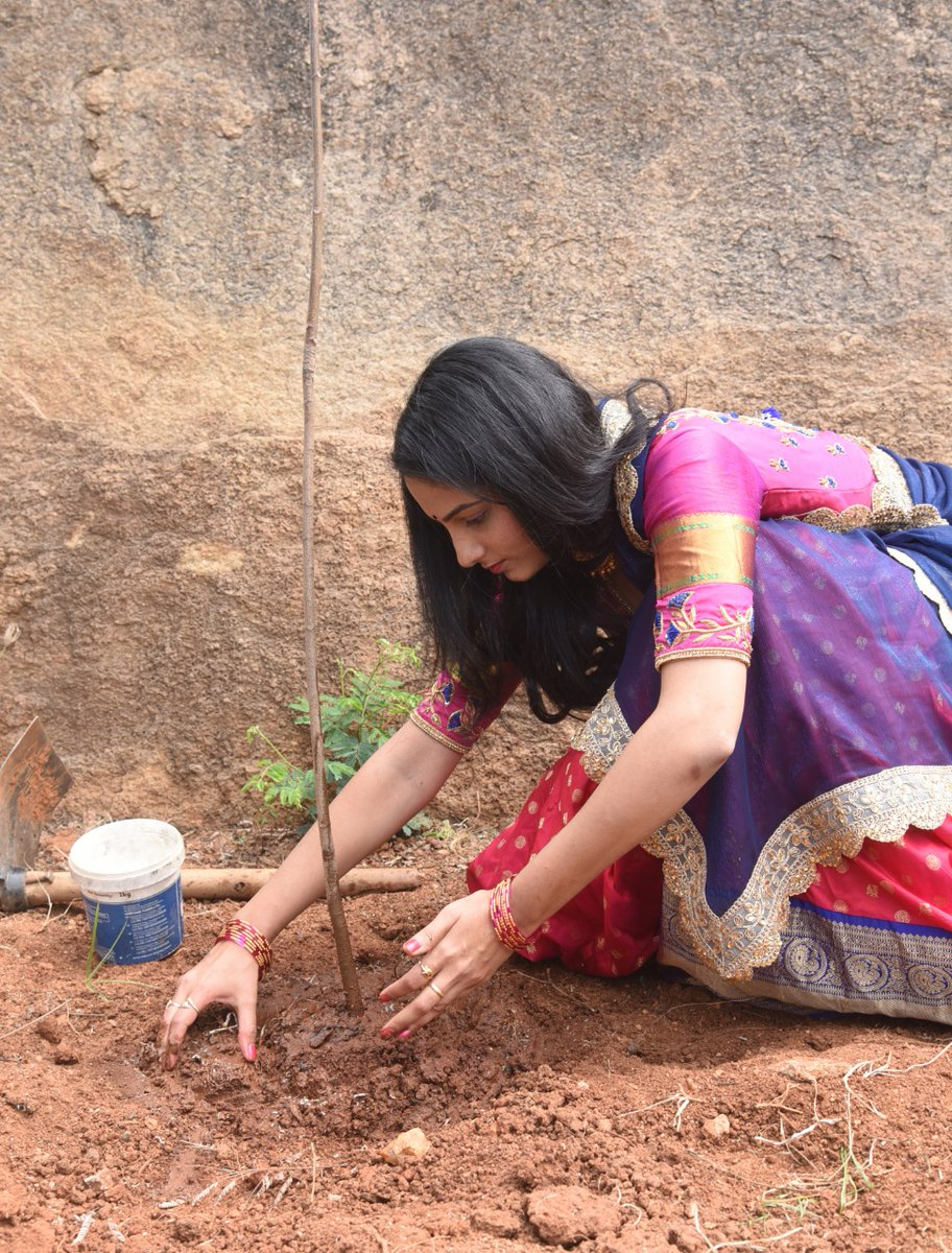 #jordarsujatha accepted #HaraHaiTohBharaHai #GreenindiaChallenge   from @mrnoelsean Planted 3 saplings. Further She nominated @singermanglifan @Gajjarmonal @cutedeekshith  to plant 3 trees & continue the chain..special thanks to @MPsantoshtrs garu for great intiate..