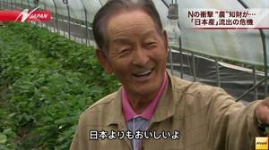 殴っていいかな  日本が30年掛けて開発したシャインマスカット 韓国に奪われ世界各国で販売される hosyusokuhou.jp/archives/48892…