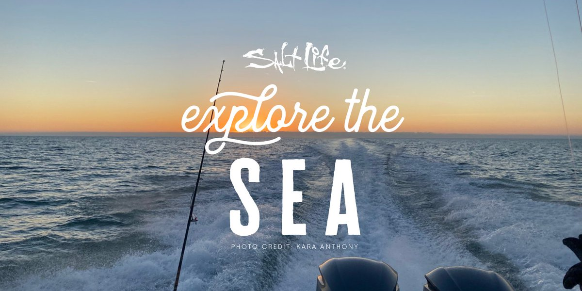 Monday? We Would Rather Explore the Sea 🌊   #MondayMood #LiveSalty