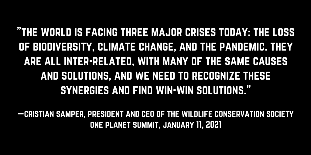 Read full statement by @TheWCS @CristianSamper at #OnePlanetSummit: https://t.co/8YEl0x4FHo  Thank you @emmanuelmacron for your global leadership. @oneplanetsummit #COP15 #biodiversity #climateaction #onehealth https://t.co/LgVg0ef9DC