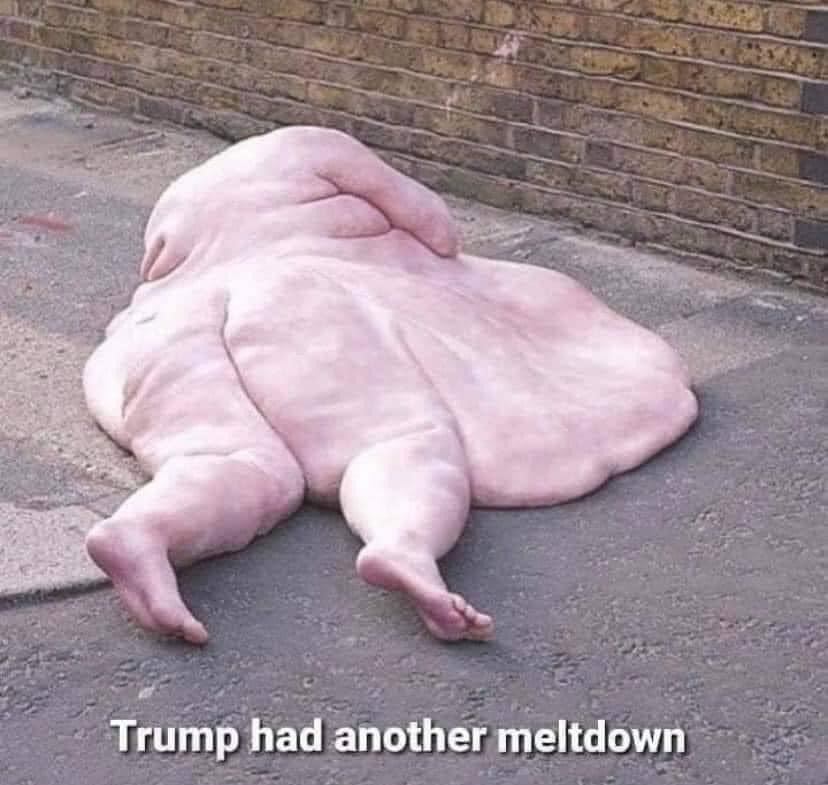 @Reuters #TrumpMeltdown https://t.co/eBOtiVkMKg