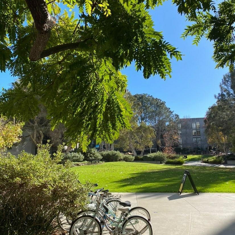 Greetings from Muir College 🌳 ❤ https://t.co/tWSoYI073P