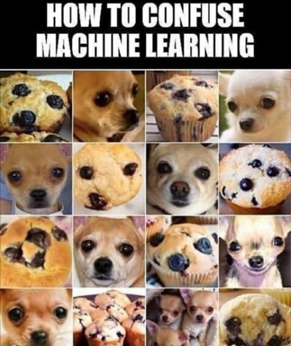 If #MachineLearning can figure it out, we're in a serious trouble 😂. #100DaysOfMLCode #ArtificialIntelligence #coding #100daysofcodechallenge #Python #100DaysOfCode #programming #Memes https://t.co/u1cd5NF3Ux