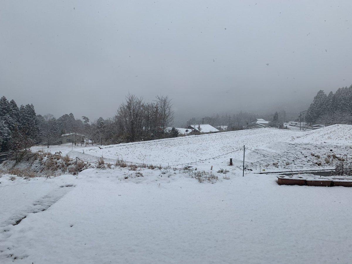 雪がすごい☃️ https://t.co/xxu8jSHu1s