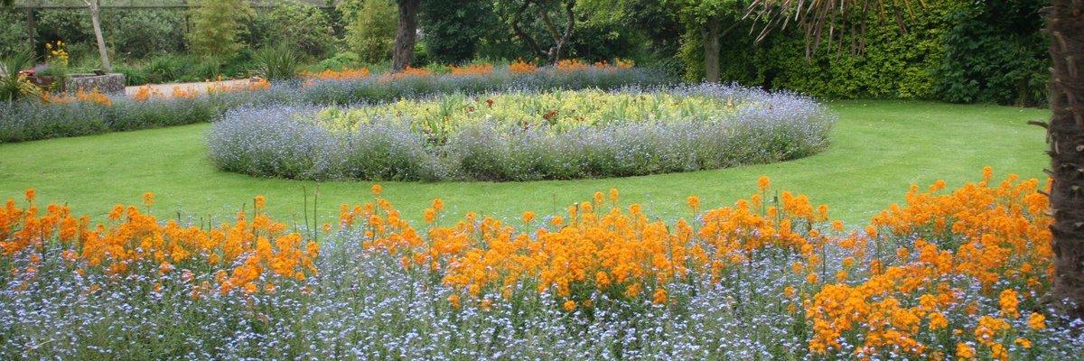 Good Night   #wildlifephotography  #cotswolds #wildlife  #wildidephotographer  #cotswold  #canon750d  #naturephotography  #loveengland  #greatbritain  #cotswoldslife  #flowers  #orange  #blue  #cotswoldwildlifepark