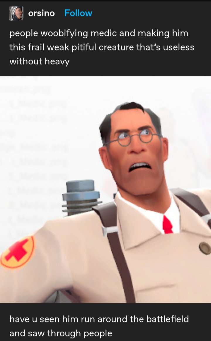 The only tf2 medic tumblr post