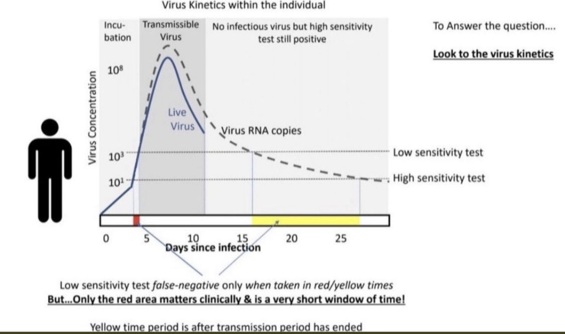 COVID Timeline (Reminder)  Person gets:  Exposed on day 0 Test +ve day 3-4 Symptoms start day 5 Contagious from day 4-12 Test remains + for weeks but patient NOT contagious after 10-14 d  No benefit in repeat testing (will likely remain + and freak you out:)