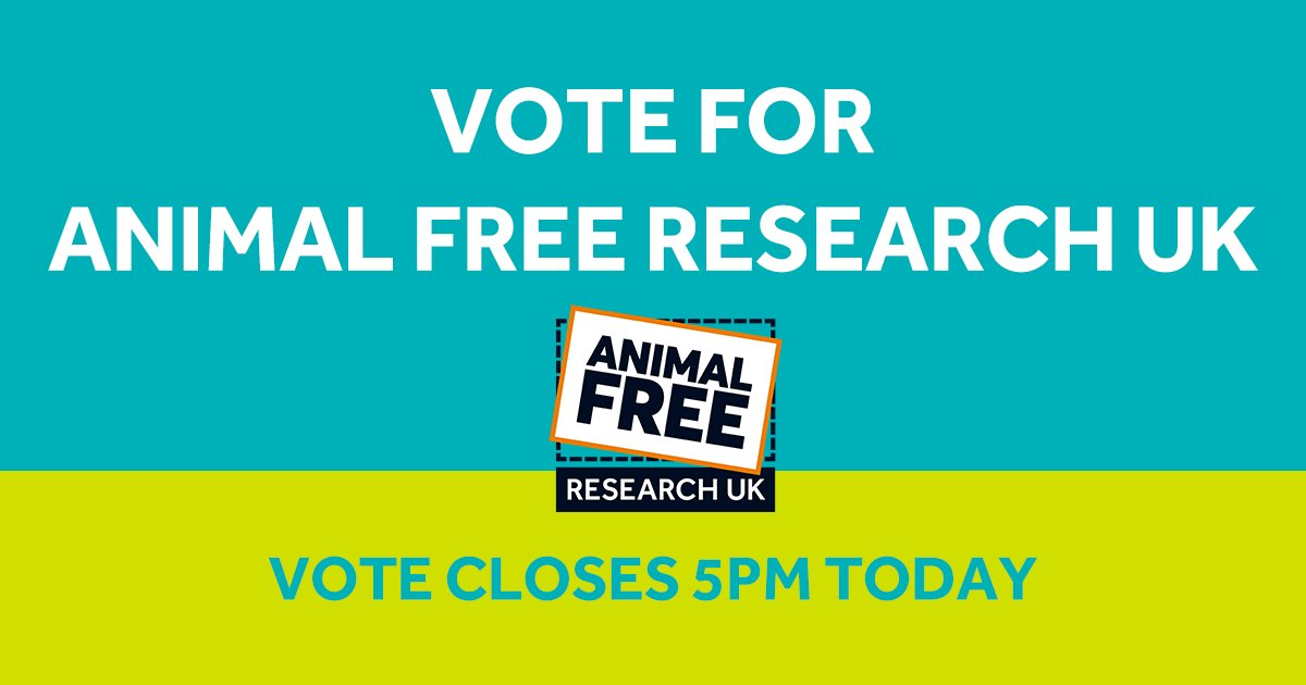 Last chance to vote for Animal Free Research UK for our chance to win the top prize of a £10,000 grant in the SEIB Insurance Brokers Charity Awards.  It's quick & easy to vote online -   Our charity number is 1146896  #KinderScience #SEIBHere2Help