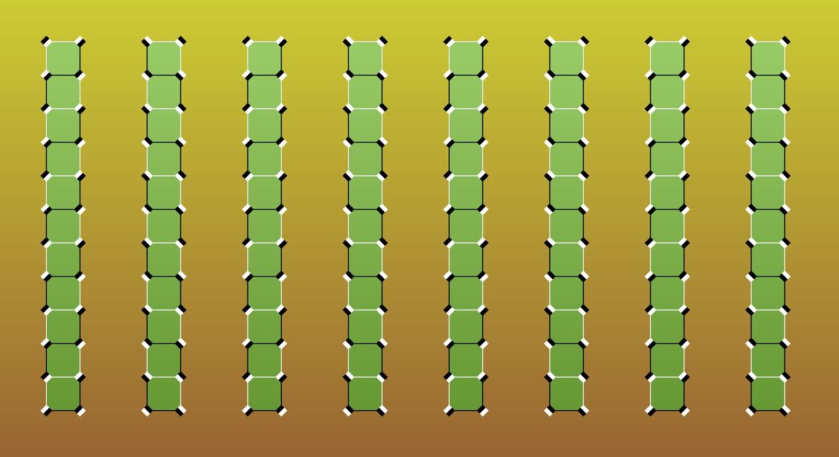 Replying to @AkiyoshiKitaoka: Bamboos appear to move.