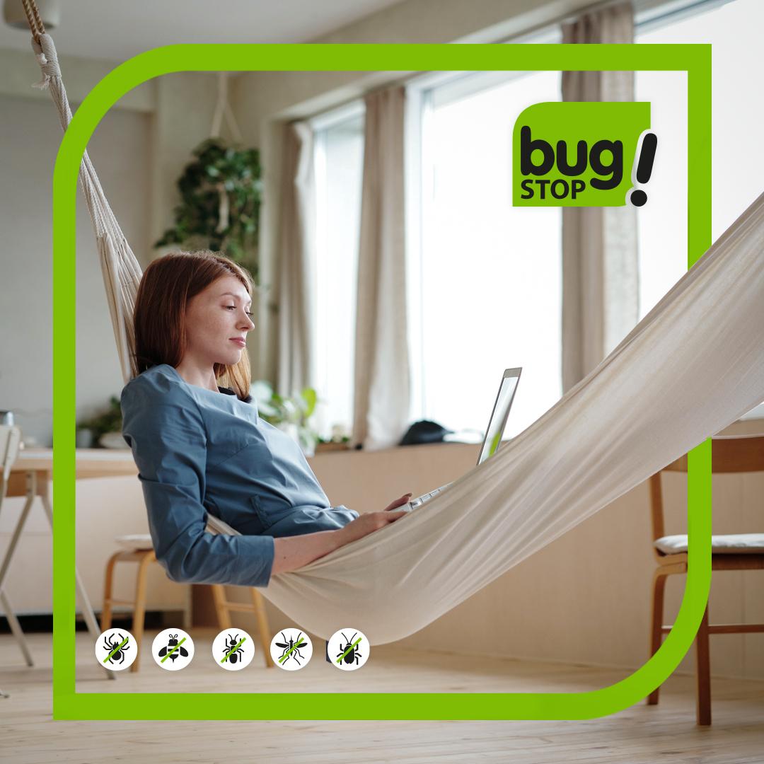 Las #mosquiteras son la mejor opción para ventilar tu hogar olvidando los insectos. https://t.co/lGM63amtkO https://t.co/V5EqEcPhhW