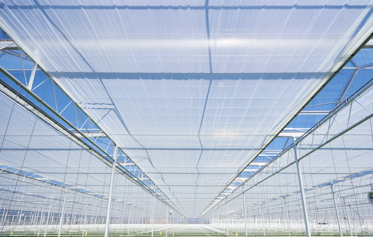 greenhouse energy curtain